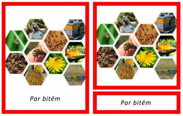 Par bitēm
