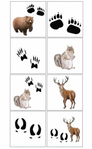 Dzīvnieku pēdiņas