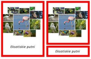 Eksotiskie putni – Safari Toobs kolekcija