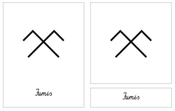 Latvju rakstu zīmes