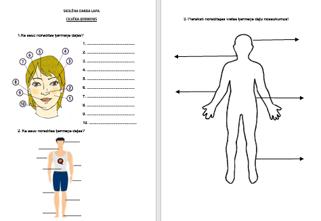 Cilvēka ķermeņa daļas
