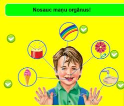 Maņu orgāni