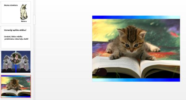 Kaķu skola