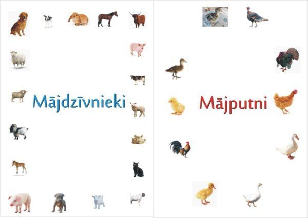 Mājdzīvnieki un mājputni