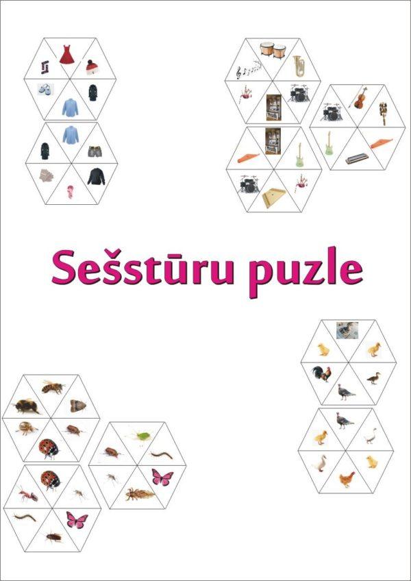 Sešstūru puzle