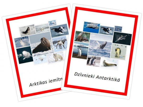 Komplekts – Arktikas iemītnieki + Dzīvnieki Antarktikā