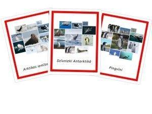 Komplekts-Arktikas iemītnieki+Dzīvnieki Antarktikā+Pingvīni