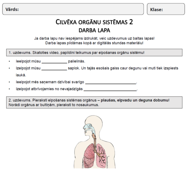 Cilvēka orgānu sistēmas (2. daļa) (2. – 3. kl.)
