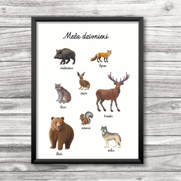 Meža dzīvnieku plakāts