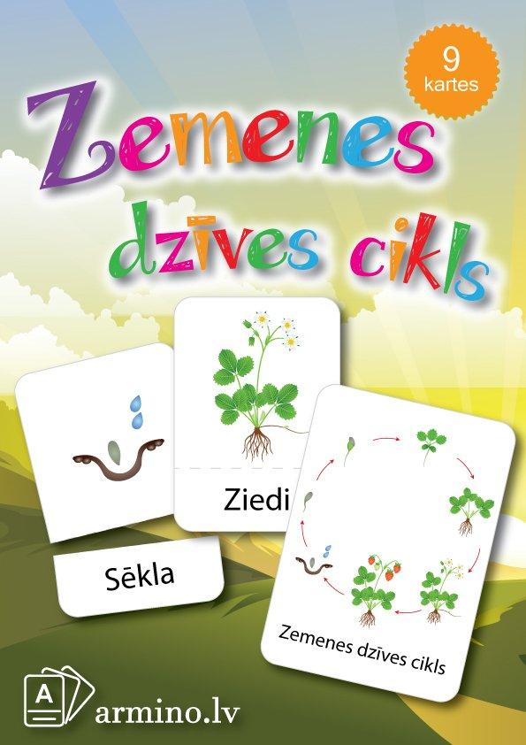 """Kartītes """"Zemenes dzīves cikls"""""""