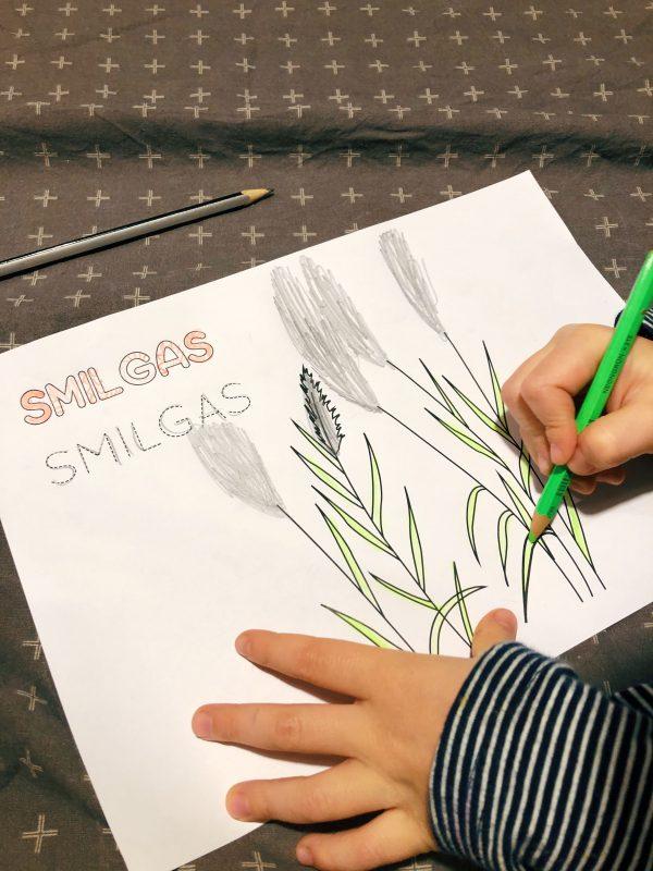 Papildini zīmējumu un mācies burtus