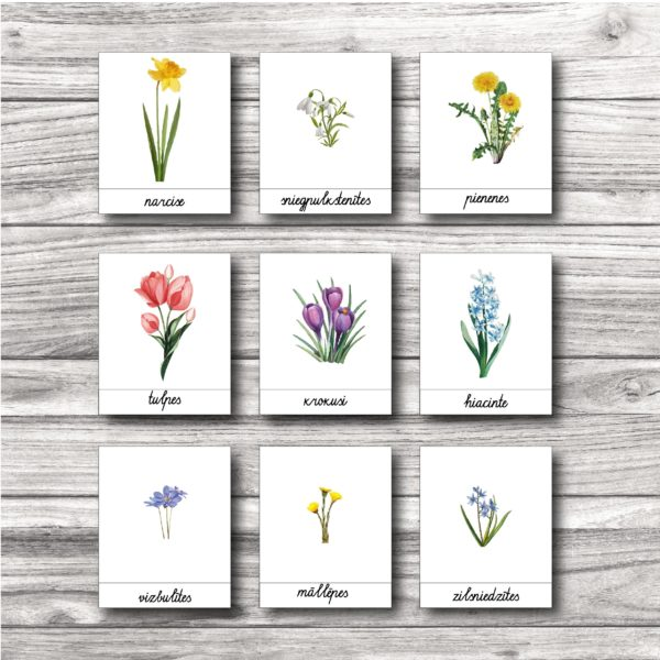 Pavasara ziedu kartītes