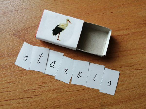 Putnu lasīšanas spēle kastītēm