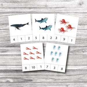 Knaģu kartītes – zemūdens iemītnieki