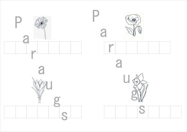 Ziedi – darba lapas un lapas krāsošanai