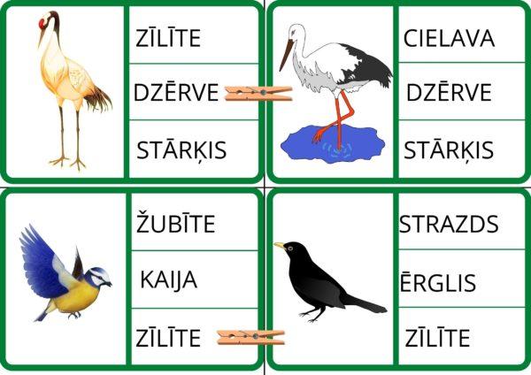 """Spēle – """"Putni"""""""