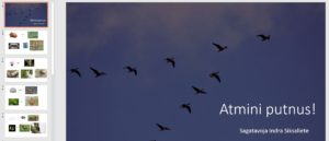Spēle Atmini putnus! (salikteņi)