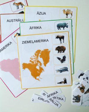 kontinentu dzīvnieki