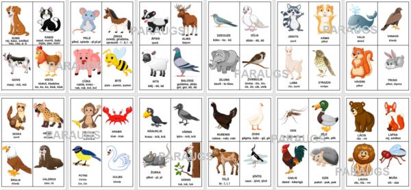 Dzīvnieku valoda