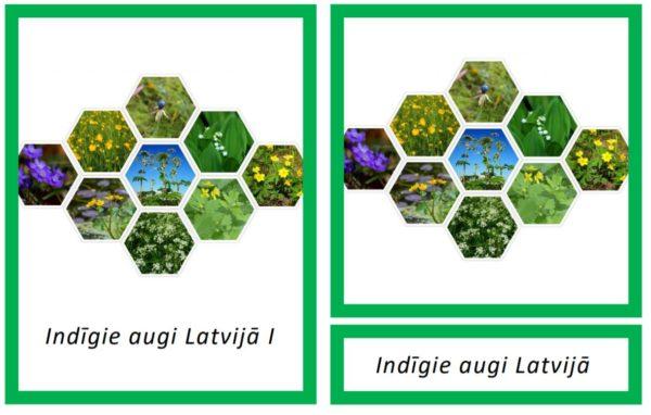 Indīgie augi Latvijā I