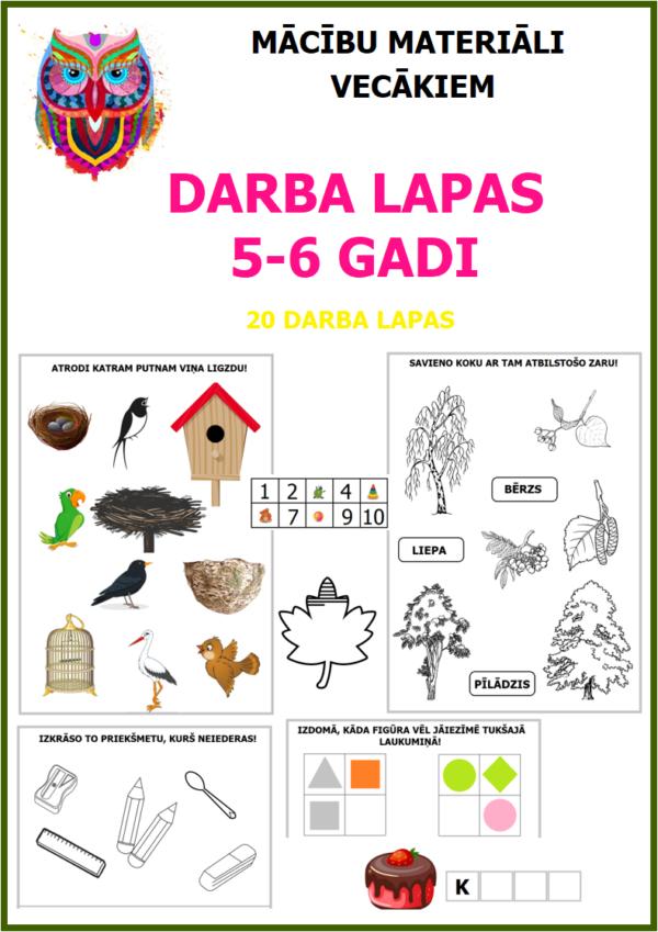 DARBA LAPAS 5-6 GADI