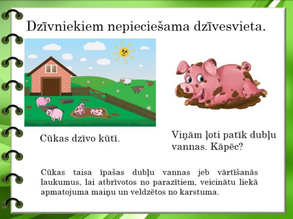 2.4. Kas nepieciešams dzīvajiem organismiem?