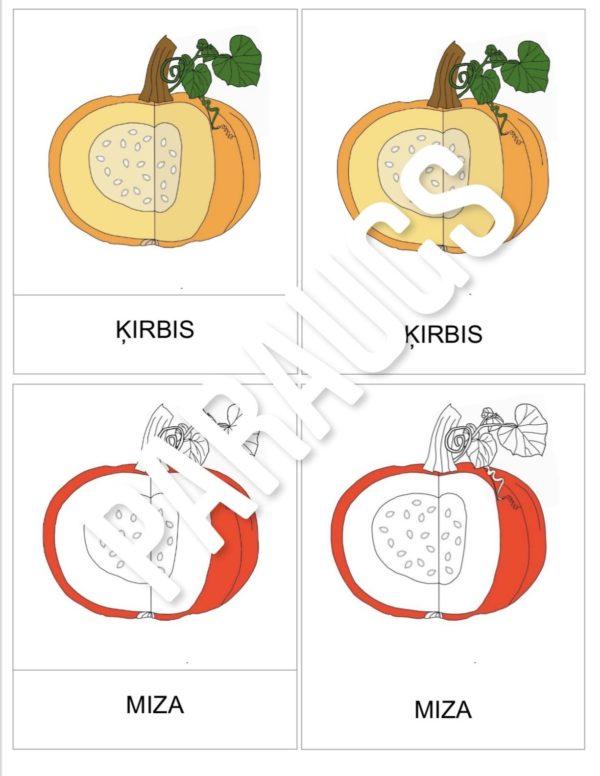 ĶIRBIS