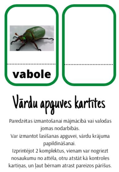Kartītes lasīšanai (kukaiņi)