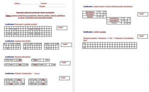 Septembra pārbaudes darbs matemātikā 2.klasei