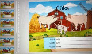 Dzīvnieku nosaukumi
