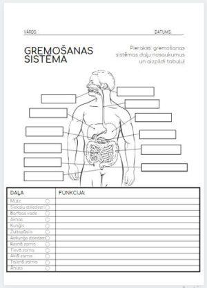 GREMOŠANAS SISTĒMA- bioloģija 9.klasei!